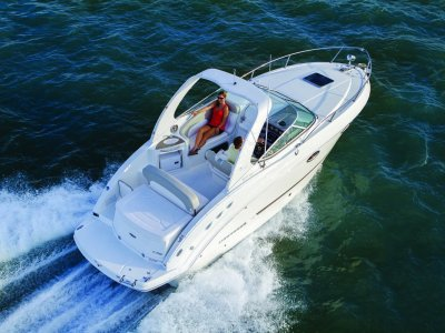 New Chaparral Signature 270