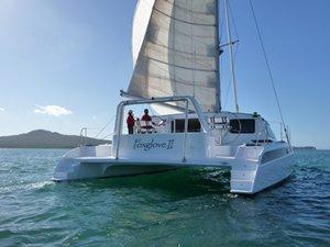 Grey/Bull Sailing Cat 54