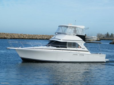 Caribbean 40 Flybridge Sport Fish