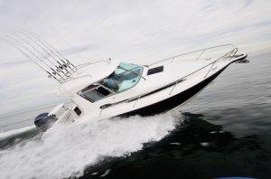 New Whittley SL 28 Sterndrive