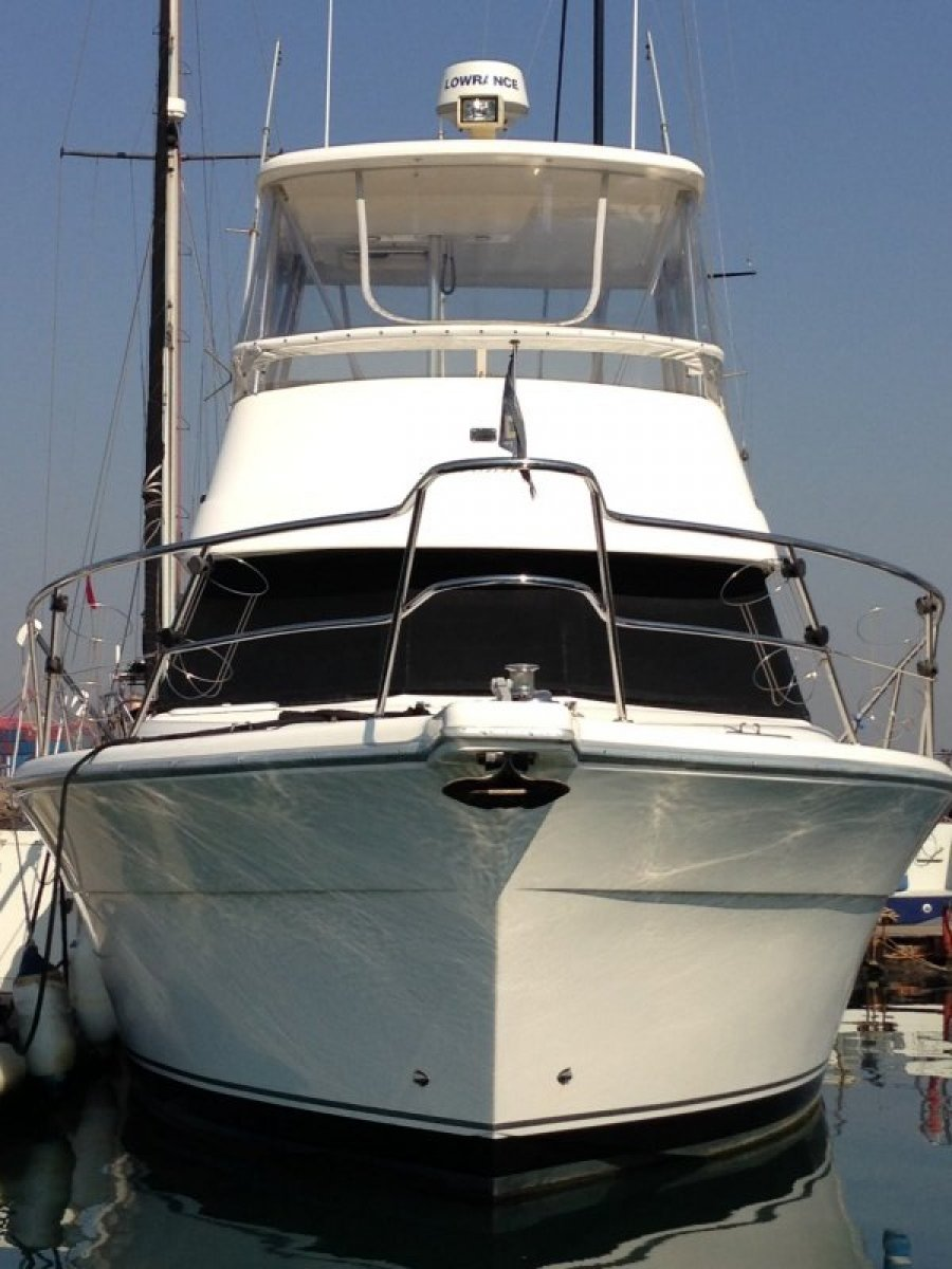 Custom Riviera 3350