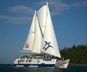 Custom Charter Sailing Catamaran
