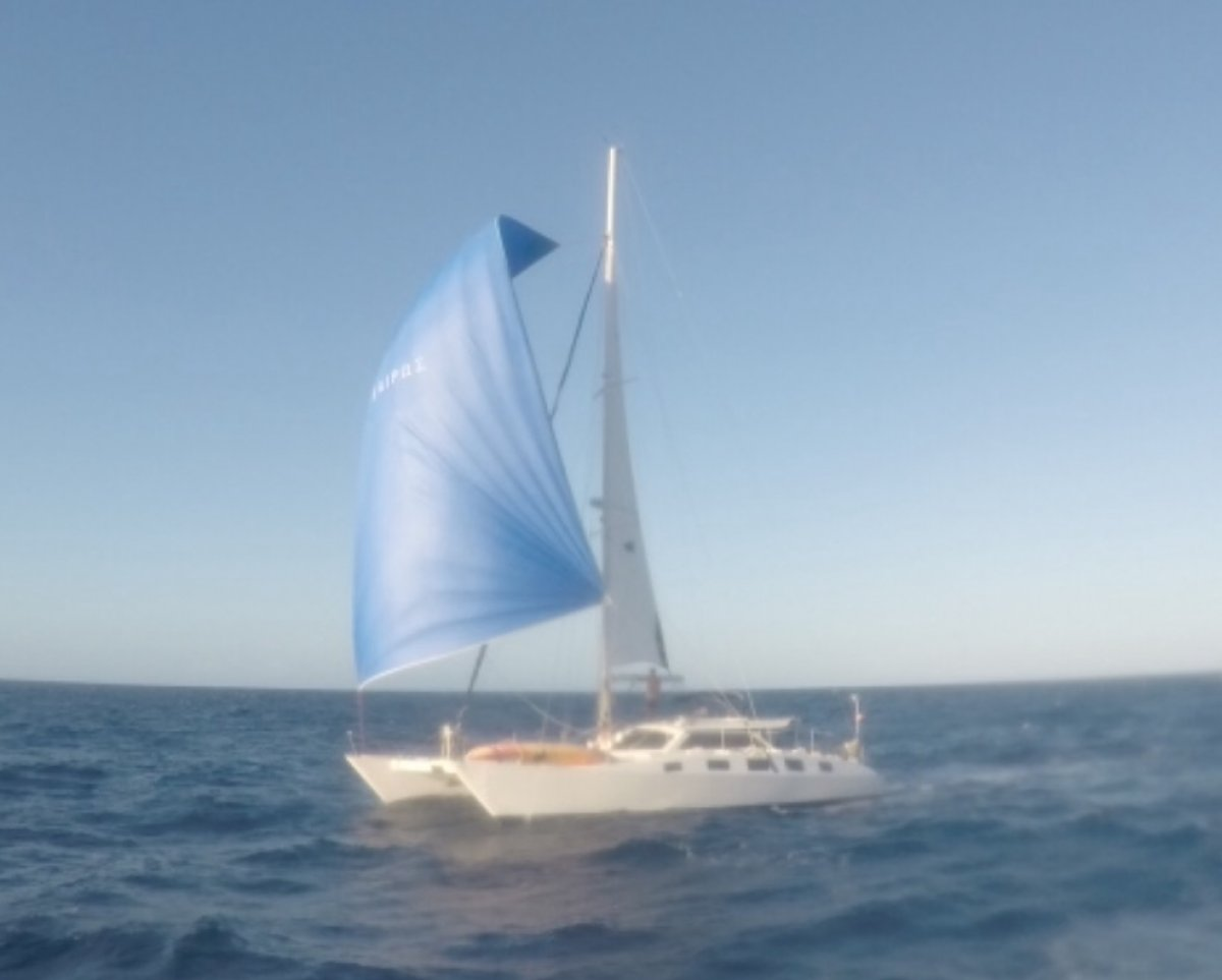 Kelsall Catamaran Large offshore cruising catamaran:Spinnaker