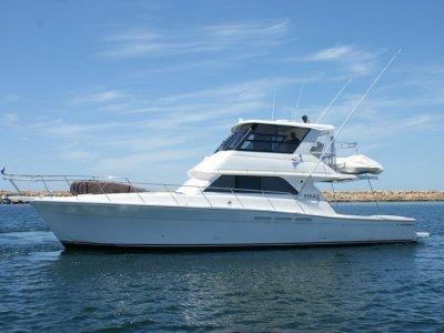 Caribbean 49 Flybridge Cruiser (Extended 47' to 50')