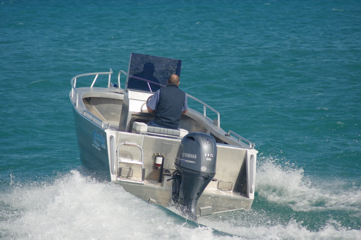 "Coraline ""SERIES II"" 550 SERIES- RUNABOUT OR CENTRE CONSOLE"