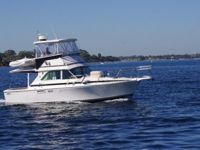 Caribbean 35 Flybridge Cruiser Sport Fish