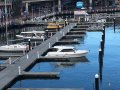 New Matilda Bay 32 Sedan, Flybridge, Charter, Fishing