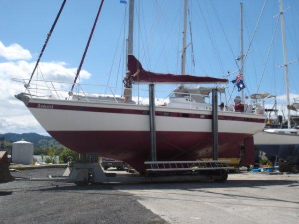 Hartley Fijian 43