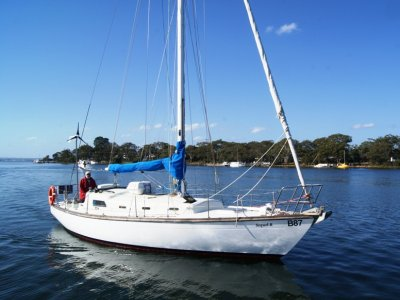 Swanson 36- Click for more info...