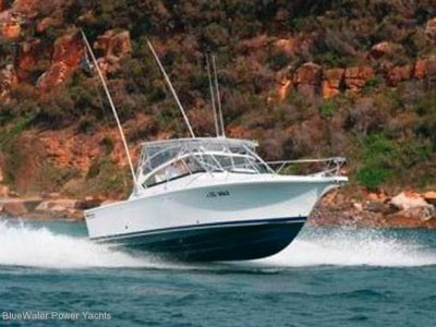 New Luhrs 30 Open Hardtop