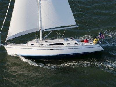 New Catalina 445
