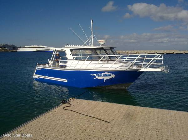 GOLD STAR COMMERCIAL DIVE CHARTER 8800