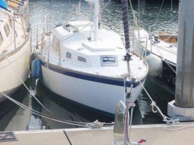Triton 26 Boat Sold