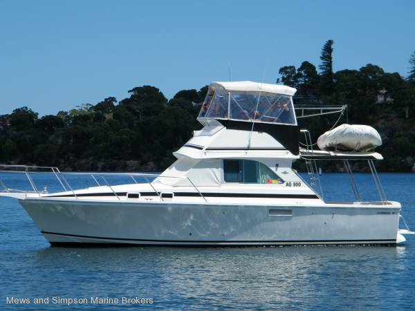Caribbean/Bertram 35 Sportfish Flybridge 1/3 Share