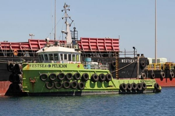 24m Twin Screw Utility Tug for Sale or Charter