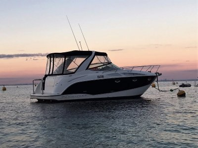 Bayliner 300 - Share