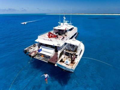 Wave Piercing Catamaran 28.2m