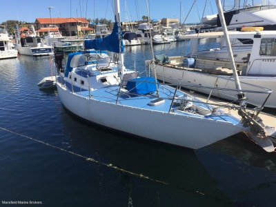 Franz Maas 36 Custom MUST BE SOLD... MAKE AN OFFER !