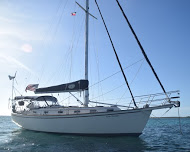 Island Packet 38 Cutter