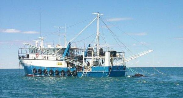 Kailis Shipyards Commercial Fishing/Workboat