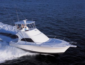 Luhrs 41 Convertible
