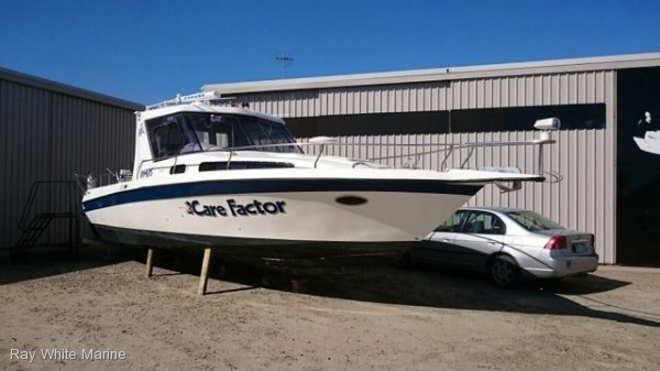 Bayliner Custom