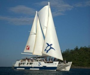 Custom Charter Sailing Catamaran