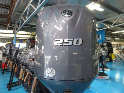 250 Yamaha 4 Stroke