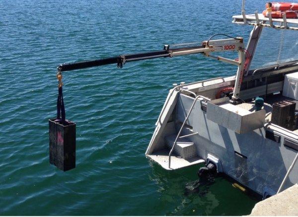 Seaquest Charter/Crew Supply Alumiium Utility Vessel BUSINESS