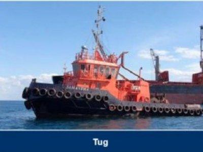 Custom Tug
