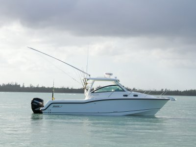 Boston Whaler 315
