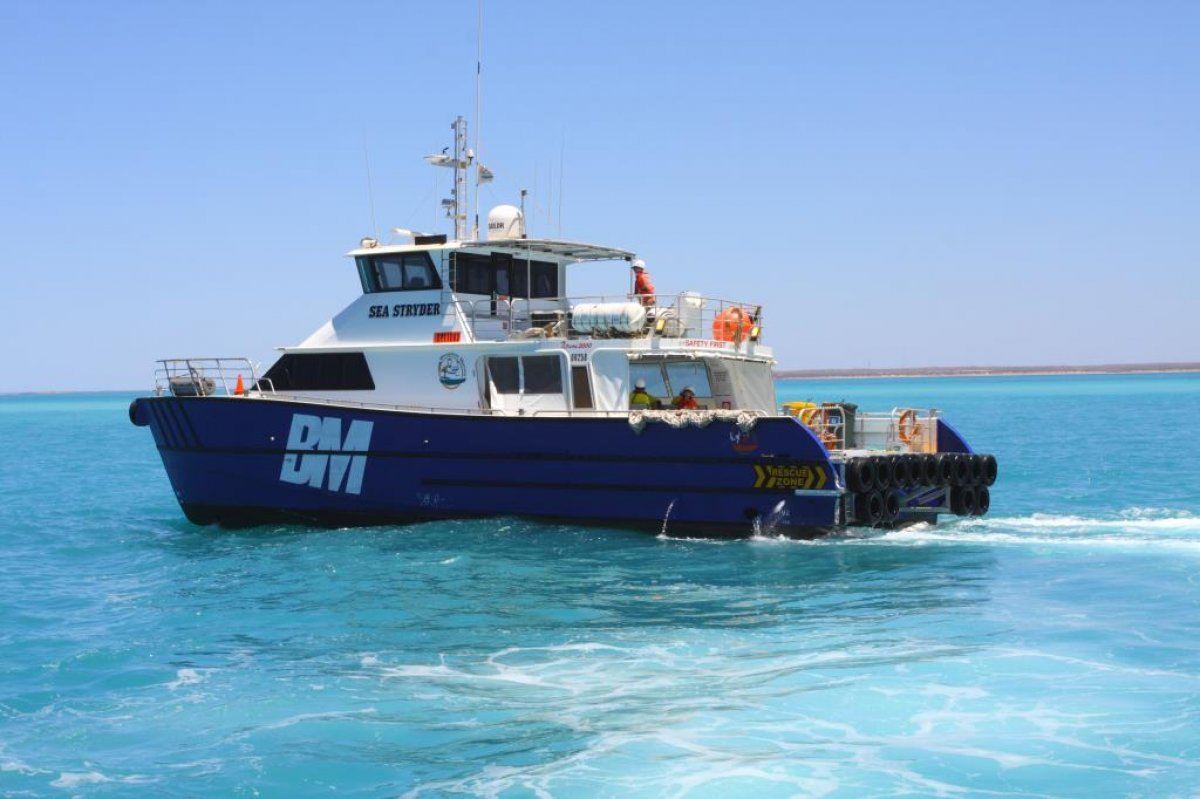 Global Marine 19.8m Charter CAT