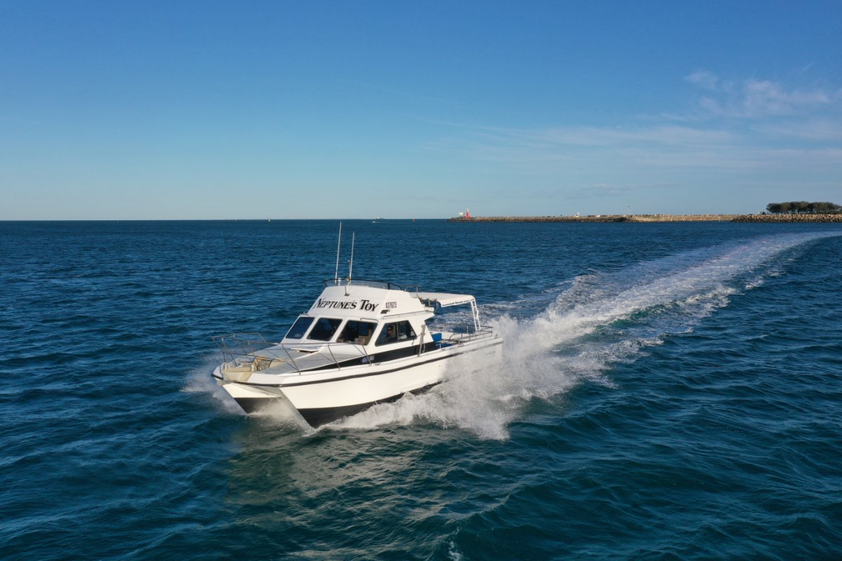 Powercat Custom Charter