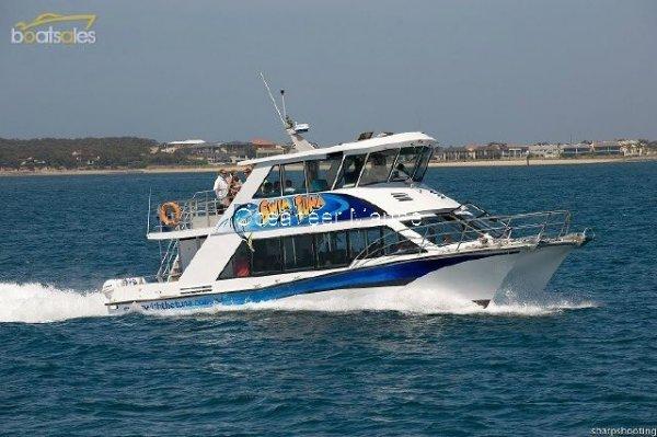 Cougar Cat Charter Catamaran