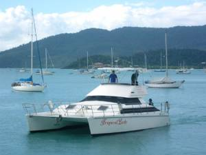 Tasman Elite 40 'Tropical Lady'