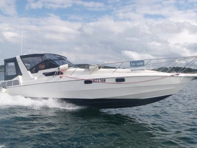 Cruisers Sport Series 40 Aerosport