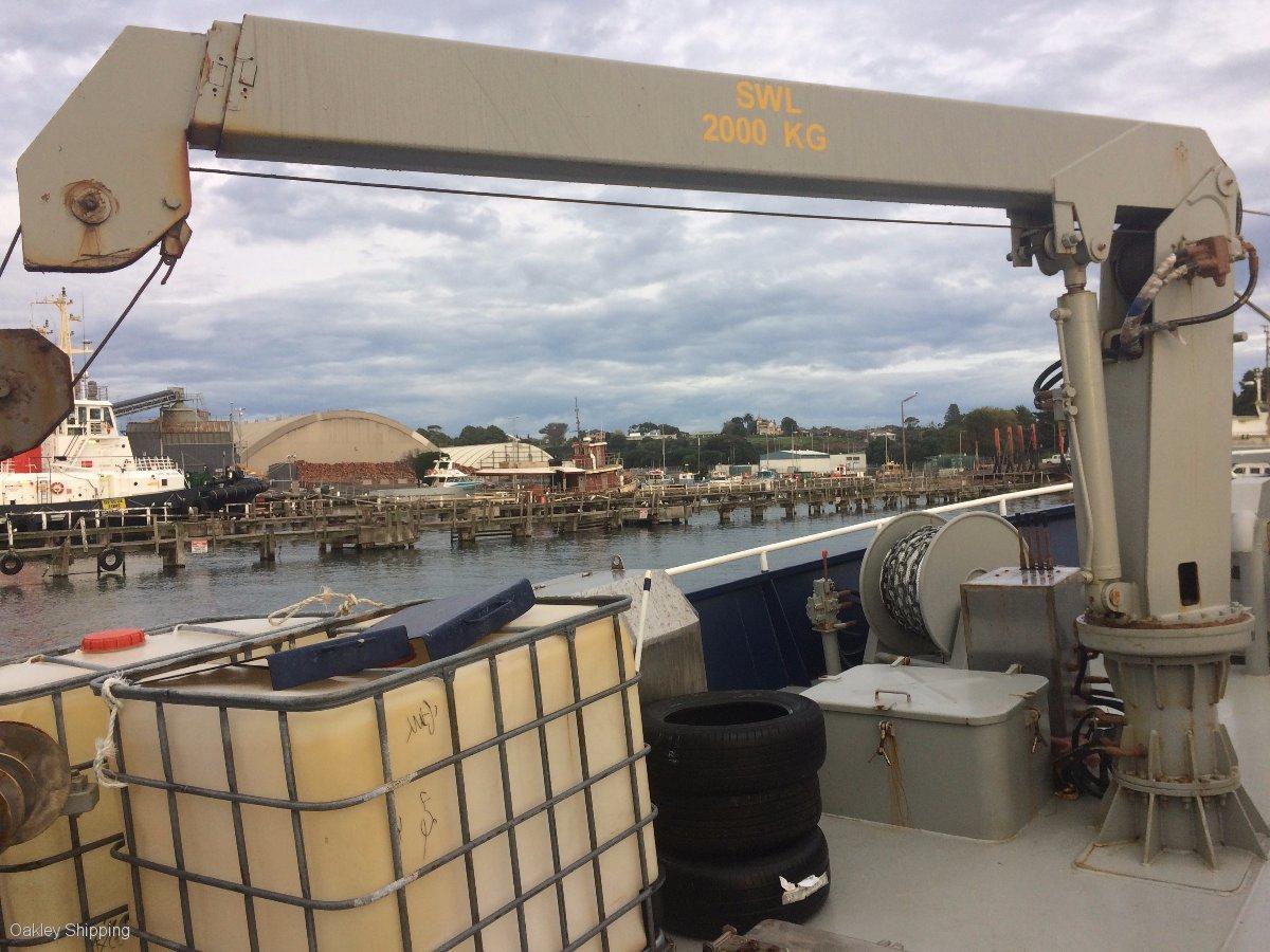 SHARK BOAT - NEW