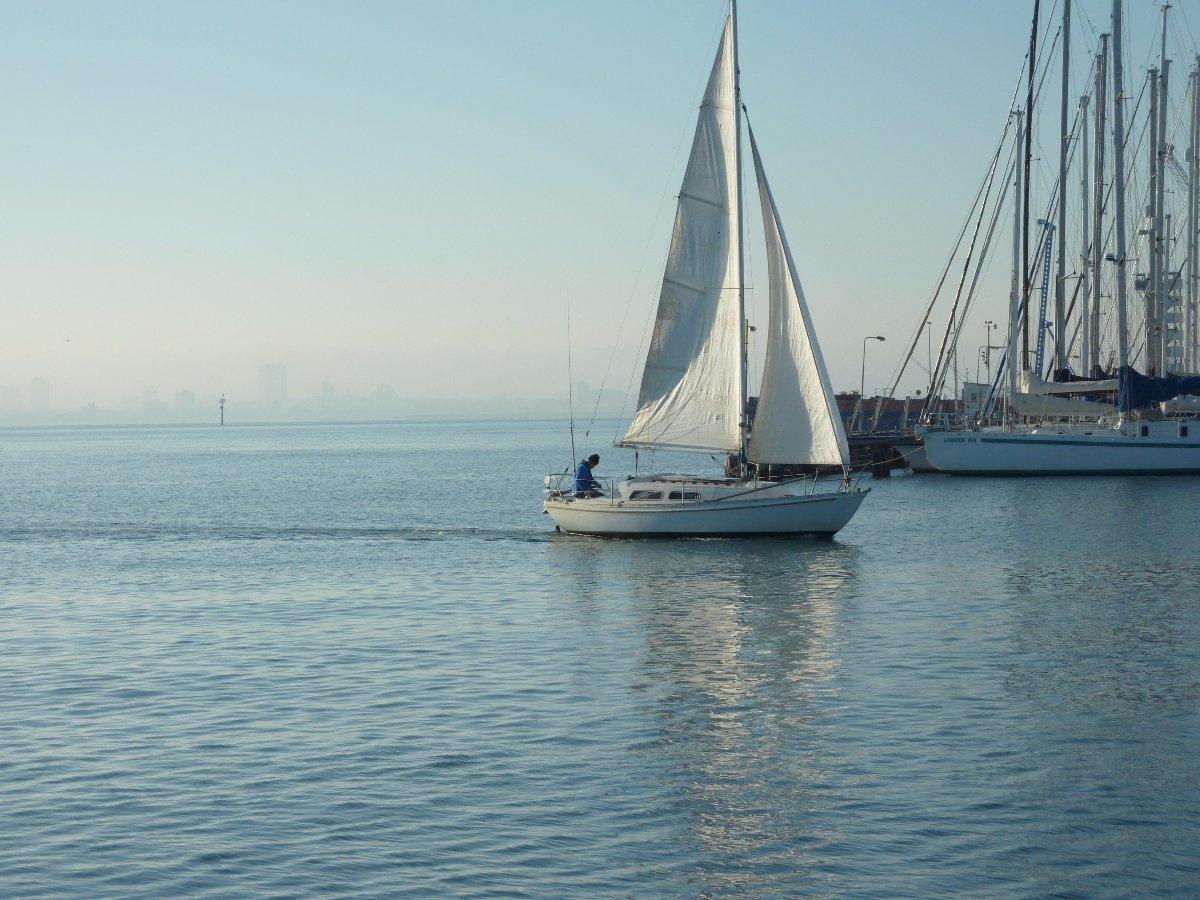 Folkboat International