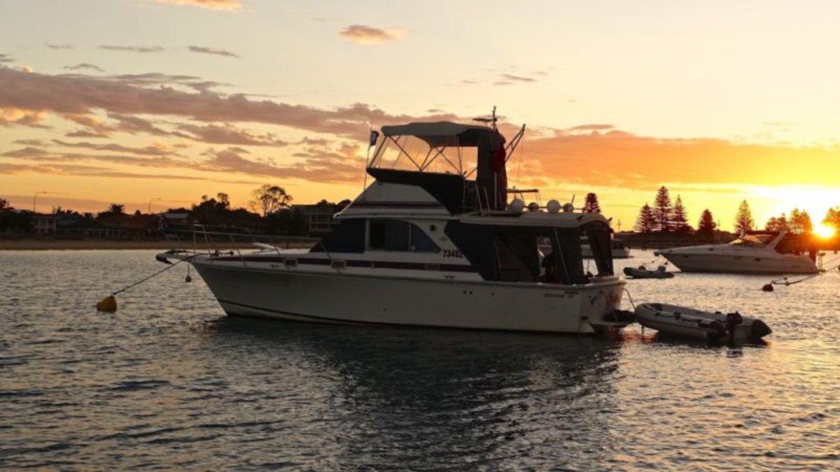 Bertram Caribbean 35 With mooring at Matilda Bay - Must See!