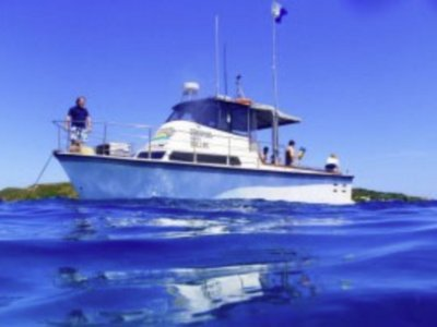 Savage 2c dive and fishing charter business for sale