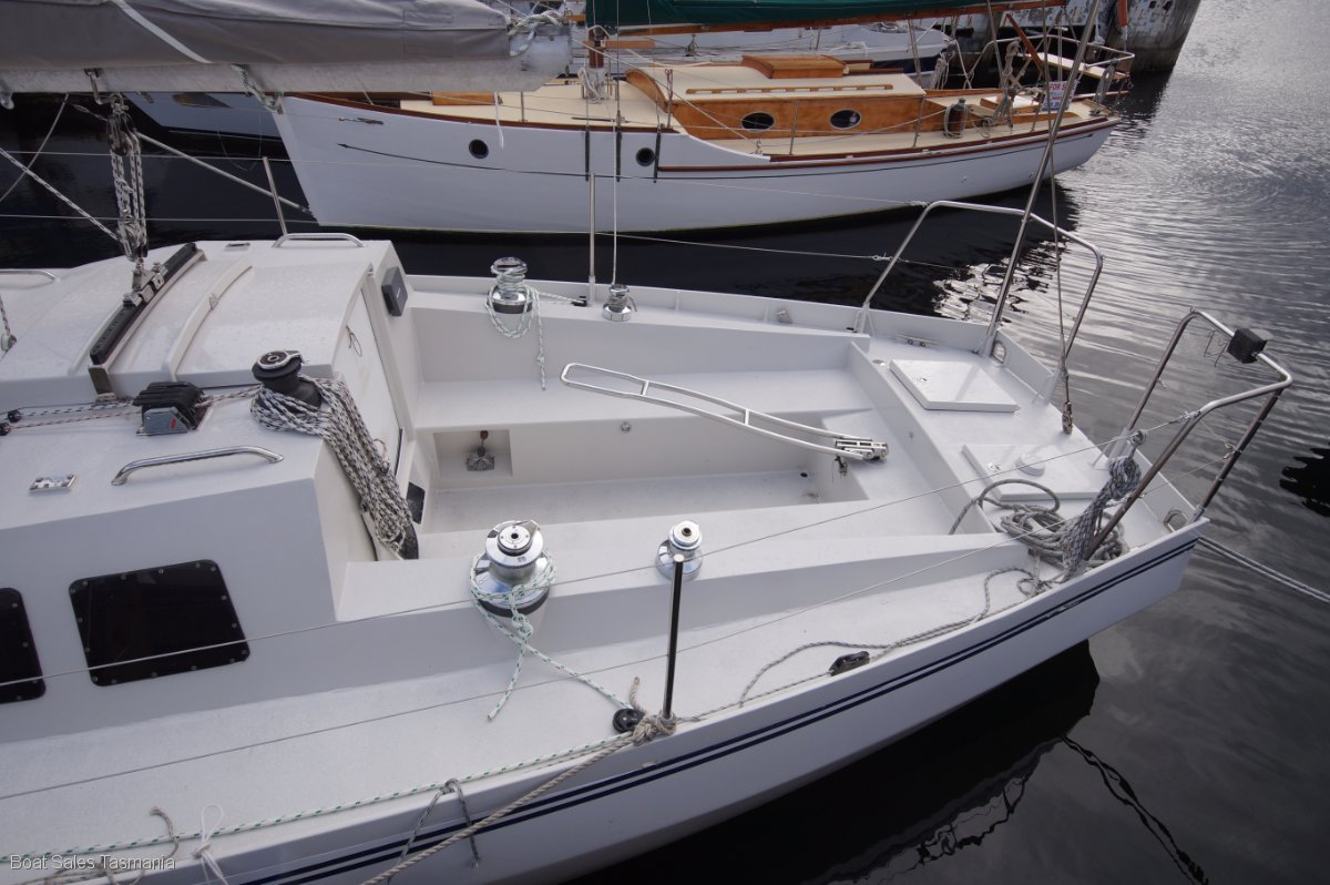 "Adams 40 ""Moonbird"""