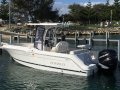 Robalo R222:And brand engine 200 - 250hp