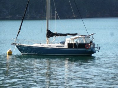 Pearson 36 Masthead Sloop COMFORTABLE, EASY TO SAIL AND CRUISE -Sale or Rent
