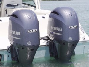 New Cobia 280DC