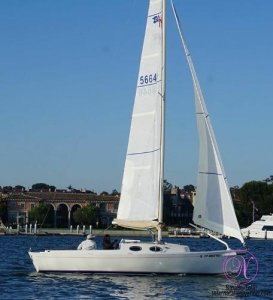 Schock Harbor 25