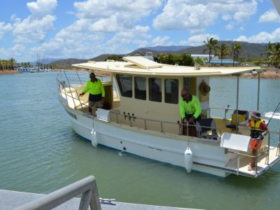 Sharpie Boats For Sale In Australia Boats Online