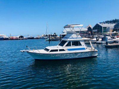Thomascraft 28 Flybridge Cruiser **RARE Shaft & Diesel config**