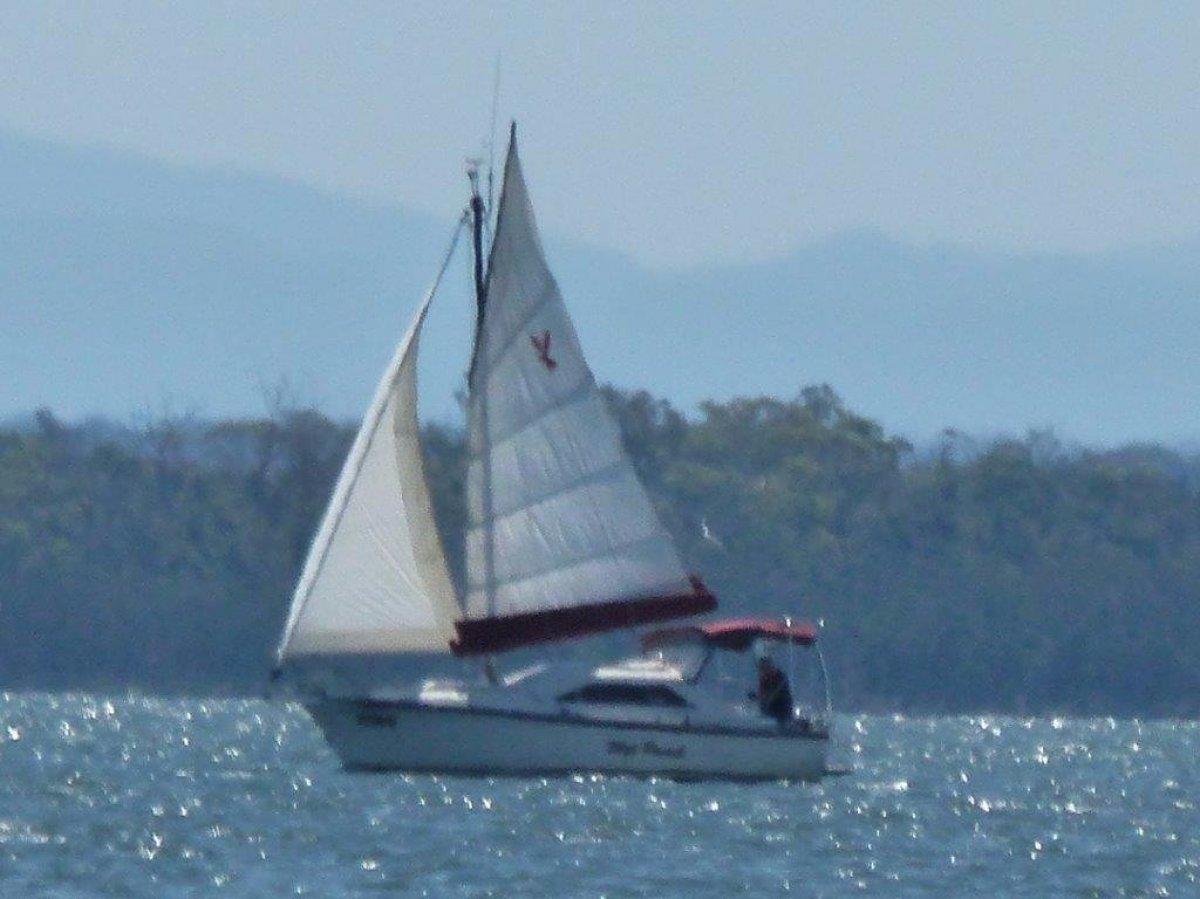 Junk Junk Boats For Sale in Australia | Boats Online