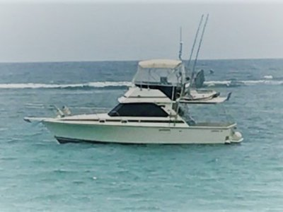 Bertram Caribbean 35 Twin Diesel Shaft Drive