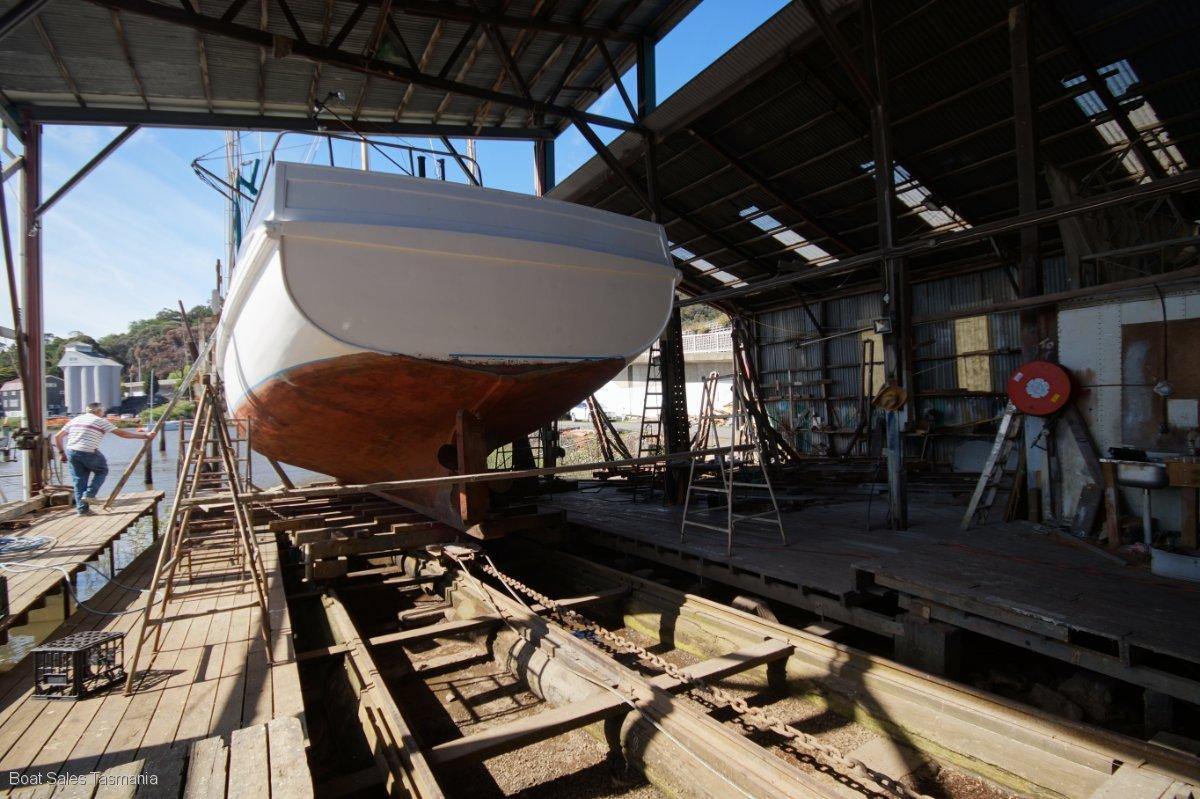 """Pompei 56 Shark Boat """"Le Tigre"""""""